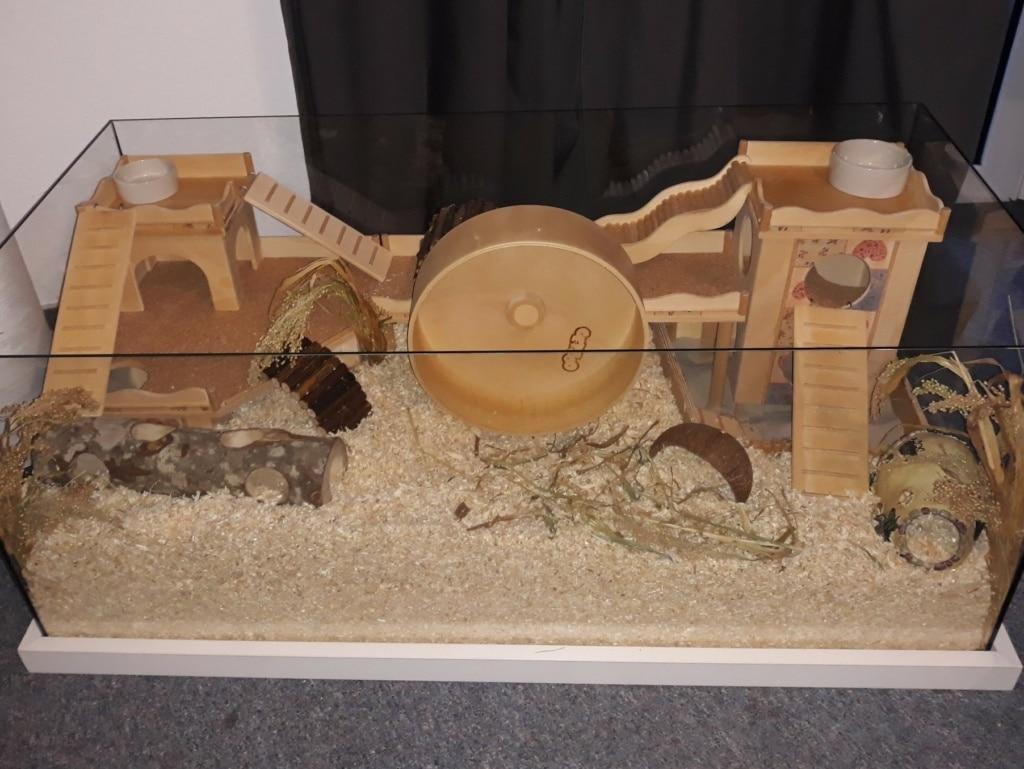 Hamsterhilfe Südwest Okarina Gehege